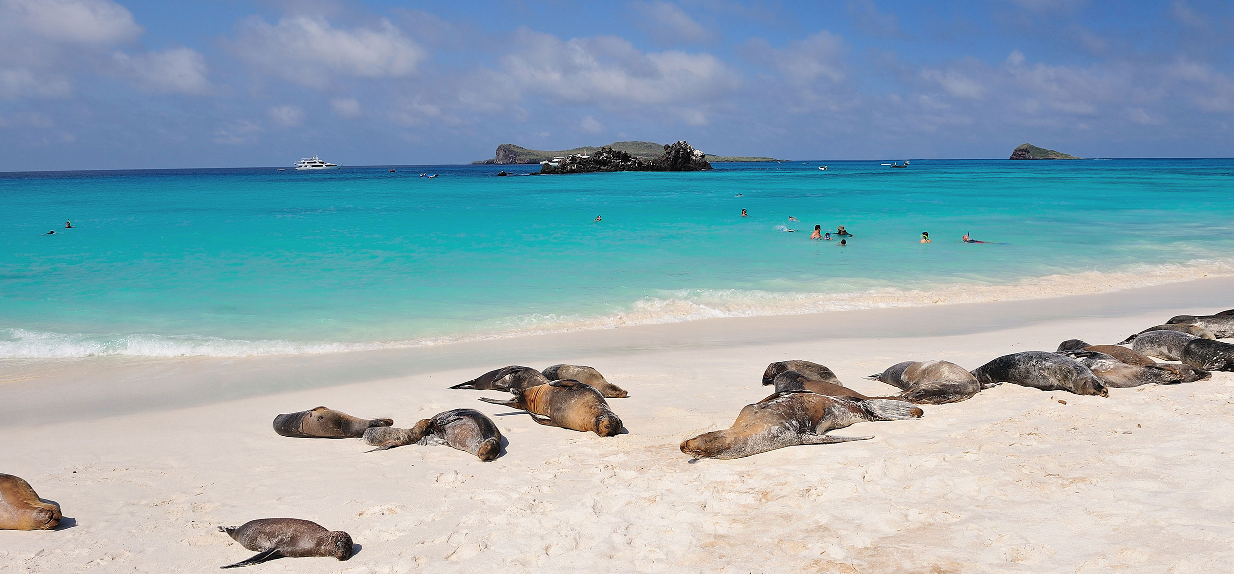 The Galapagos beaches